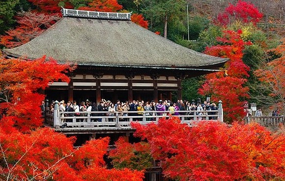 10 Best Things to do in Kyoto Japan